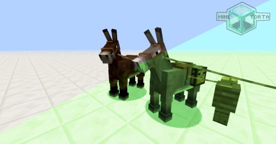 Mula e Burro Cachorro